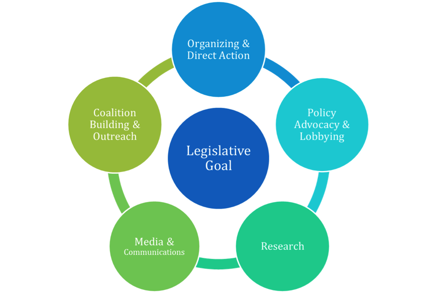 CFYJ Policy Campaign Model