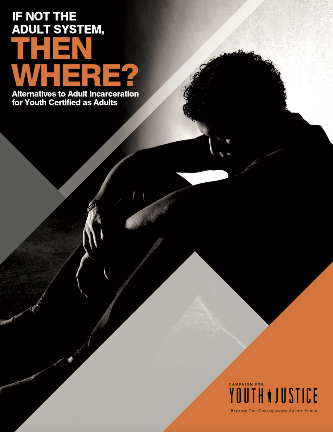 If Not The Adult System,Then Where? Alternatives to Adult Incarceration For Youth Certified Adults